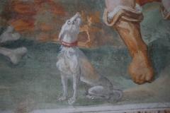 65a Particolare -Cane rabbioso e piede di San Vito