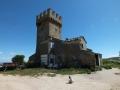 torre-matteucci_01