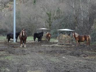 Altopiano di Montelago – Sefro (MC)