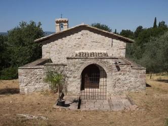 madonna olivo - assisi 14