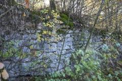 84 Muro di cinta del convento degli zoccolanti