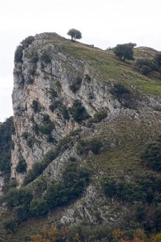 05 Sito del Castello di Loreno